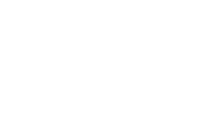300x300 Ichthus logo white